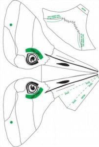 Маска вороны своими руками из бумаги шаблоны