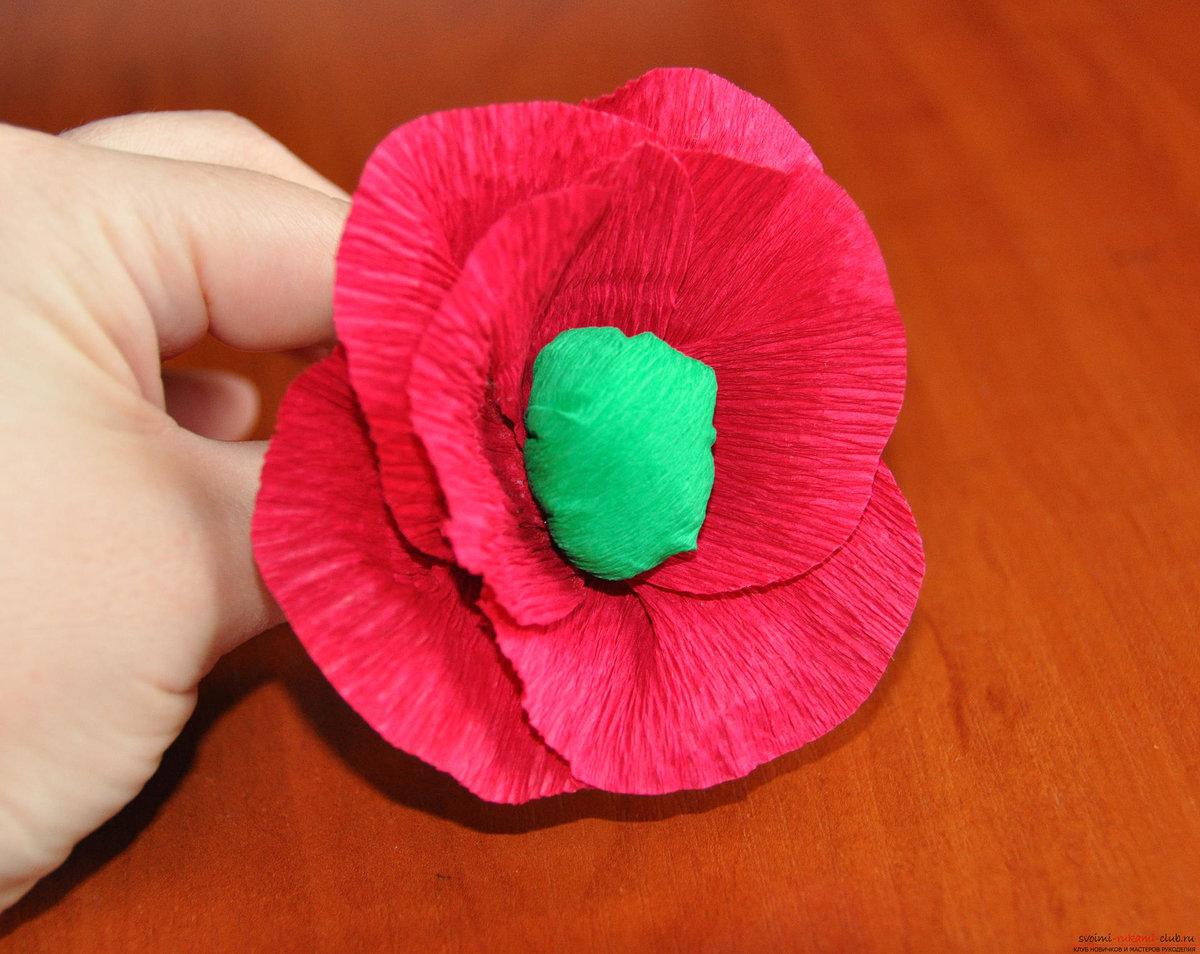 Цветы из креповой бумаги фото.