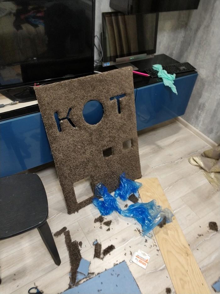 Мастер класс по изготовлению домика для кота своими руками