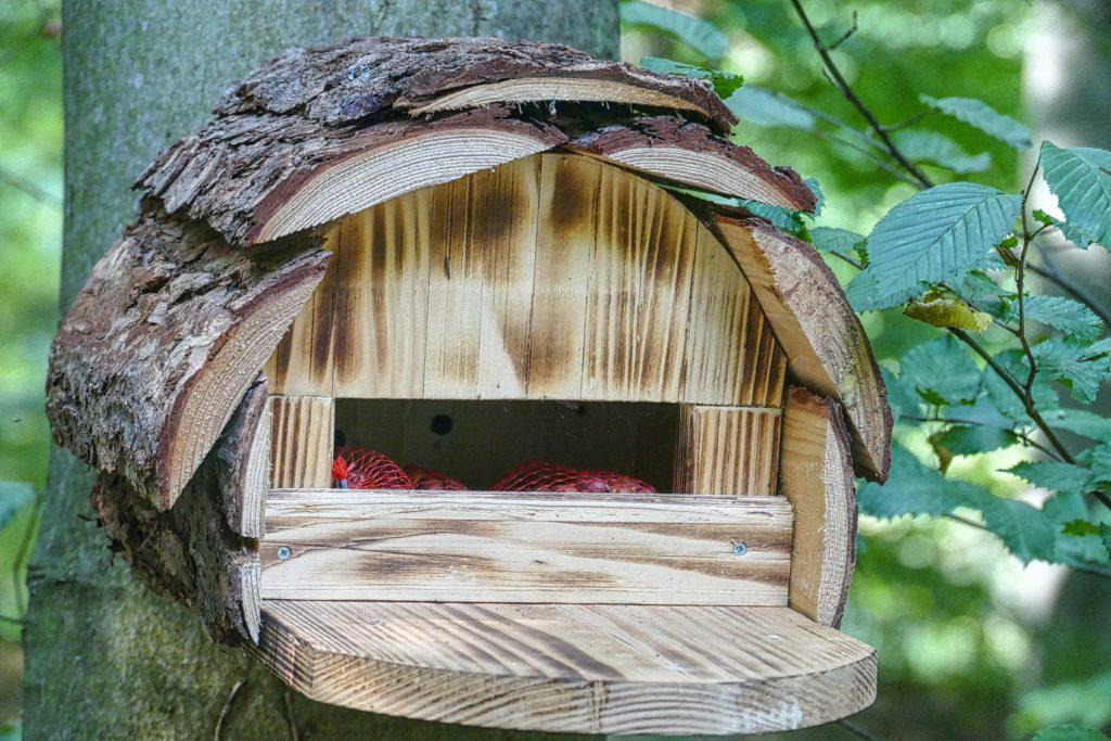 фото кормушек для птиц красивых и легких холодные оттенки серебристый