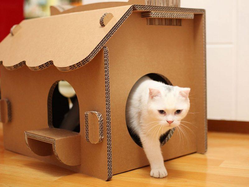 Красивые домики для кошек